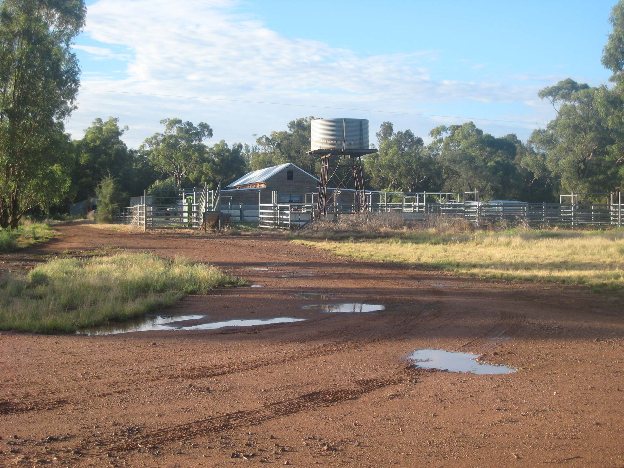 Borambil woolshed