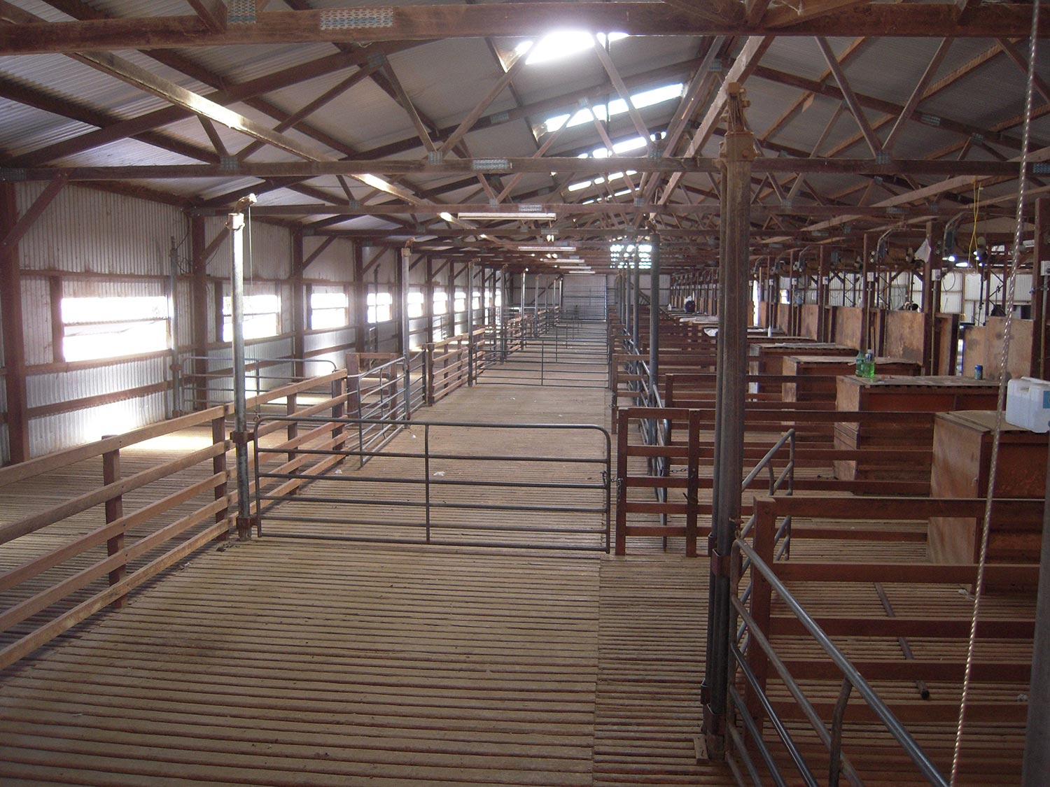 Cooinbil shearing shed