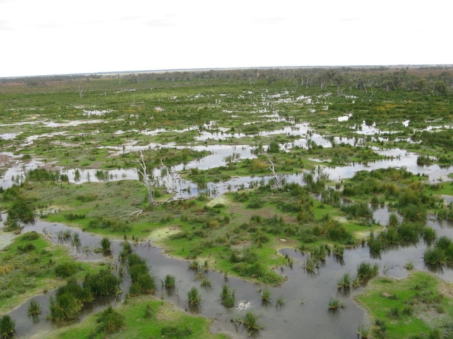 Oxley Macquarie Marshes