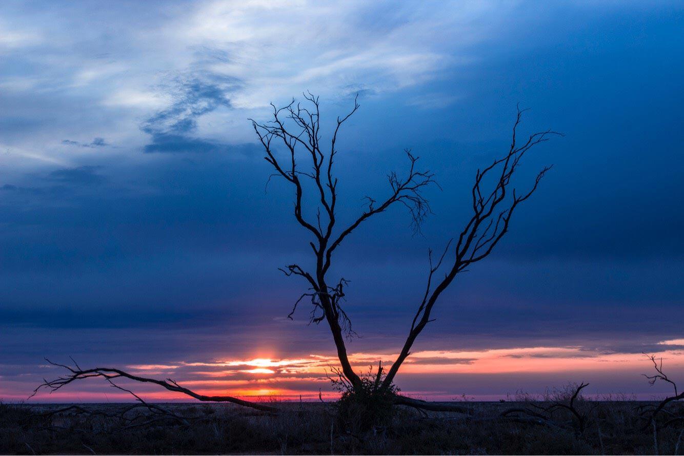 Ulonga sunrise