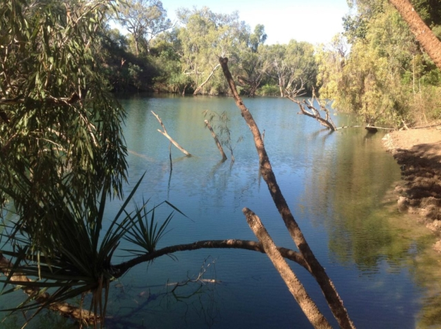 Gregory Downs water